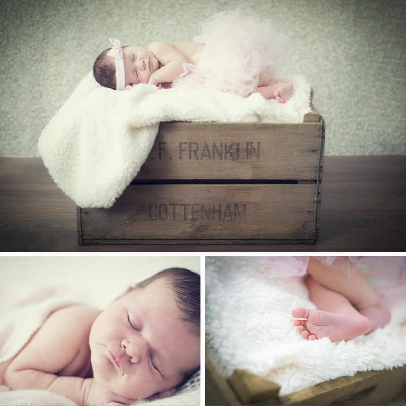 Charlotte newborn photography